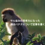 サル並みの思考力になった僕はバナナについて記事を書く